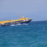 Aegina flying dolphin